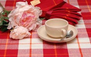 Водостойкая скатерть с пропиткой для кухни: виды и формы, дополнительные полезные свойства