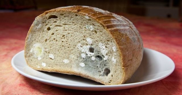 Хлебница из бересты: особенности деревянной хлебницы, варианты резьбы резной хлебницы из дерева